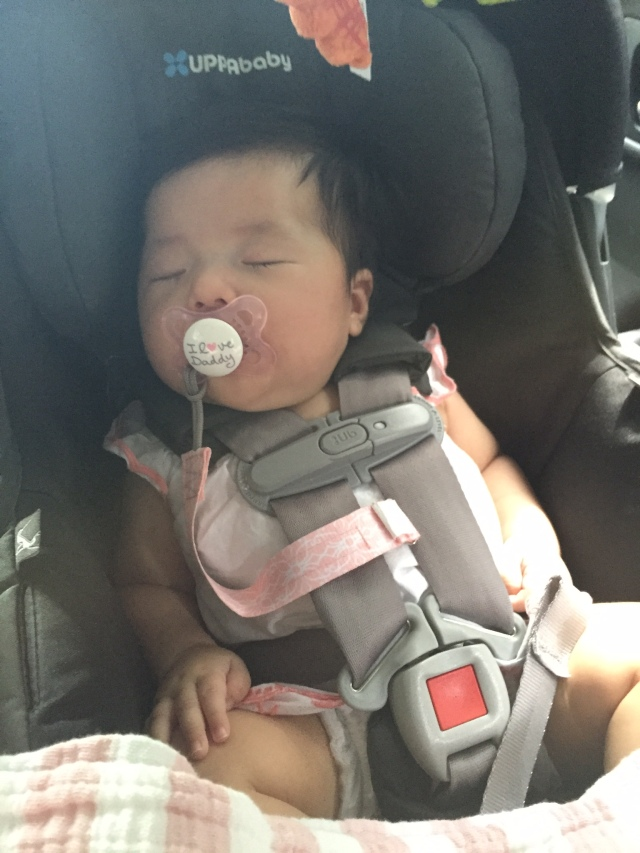 her brief nap on the way down to nj