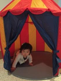 penny enjoying her new tent